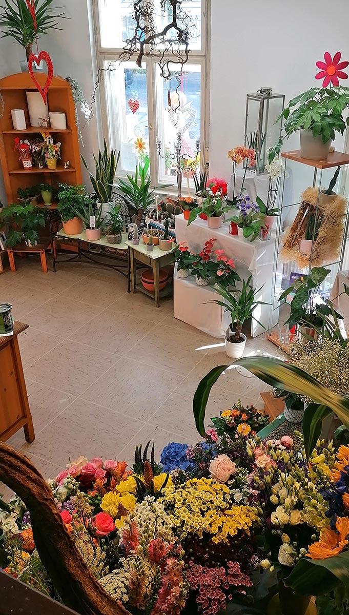Blumengeschaeft zur Rose Potsdam
