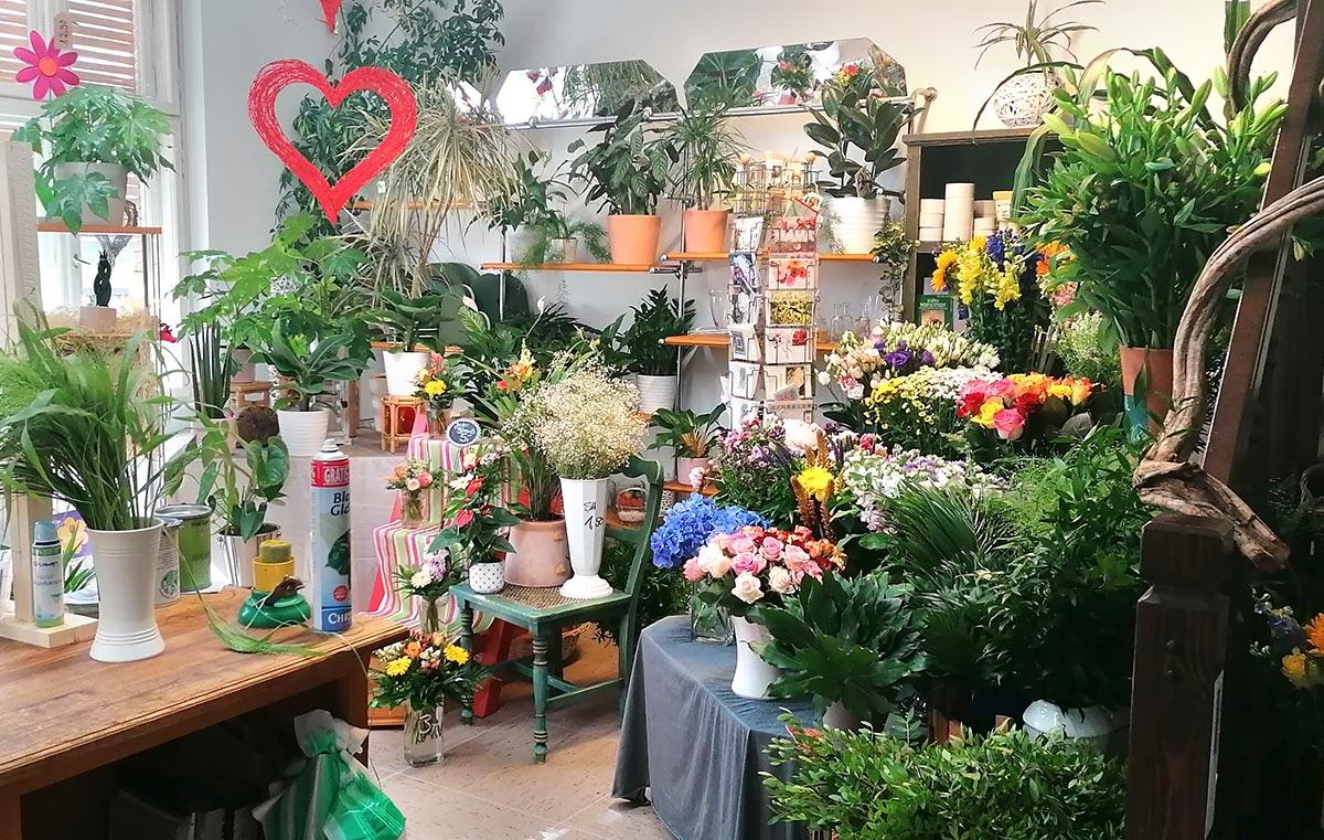 Blumenladen Potsdam zur Rose