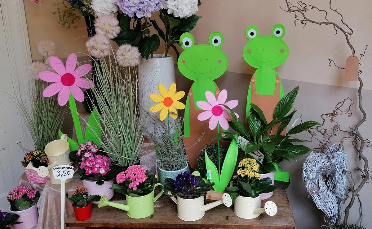 Topfpflanzen Blumen Fruehlings Dekoration