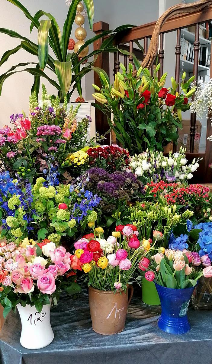 Topfpflanzen Blumen Rosen Tulpen bunter Blumenmix