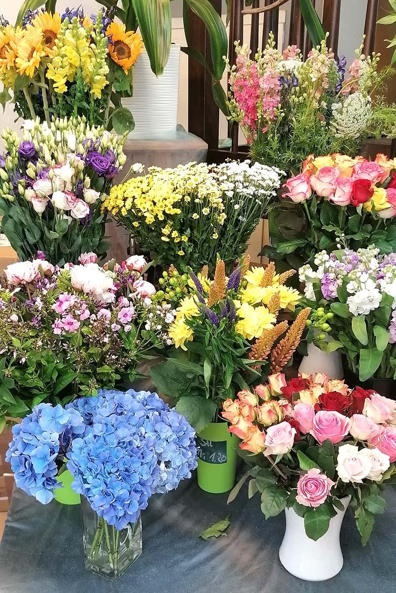 bunte Blumen zur Rose Potsdam
