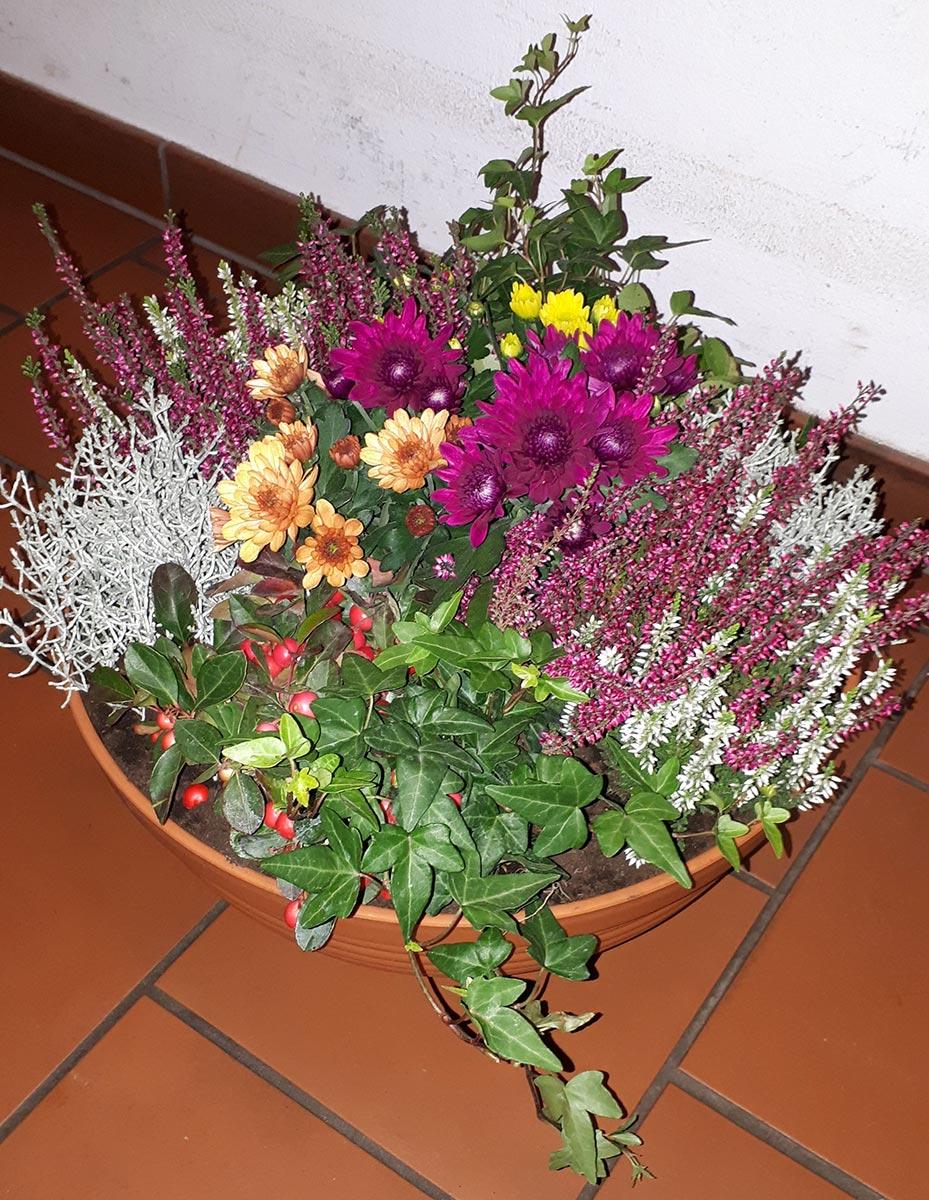 bunte Blumenschale