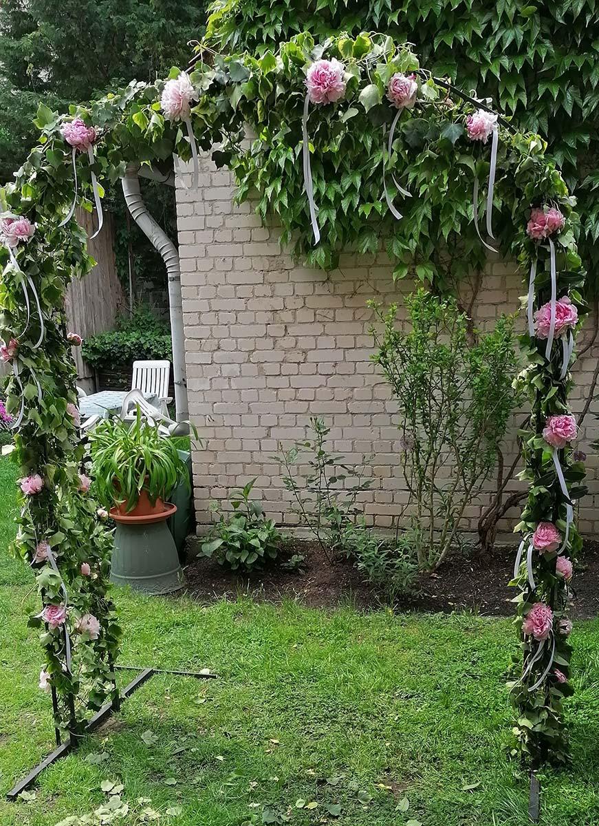 pink Rosen Torbogen